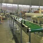 conveyor 1